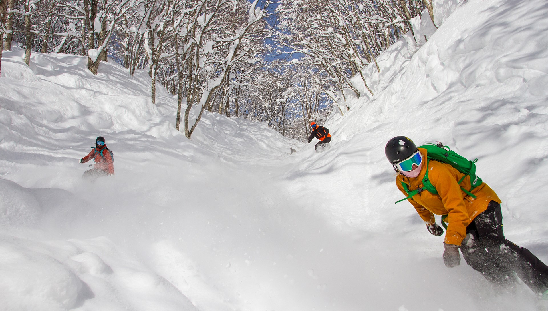 Madarao Powder Run